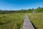 Boardwalk on Nature Trail at Pancake Bay