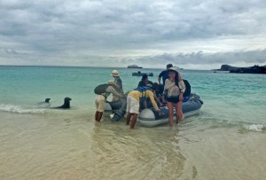 Galapagos: Wrap Up