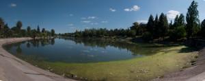 Boating lake in Park