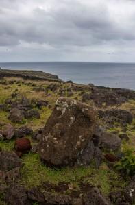 Moai Face