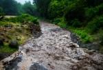 Road-River