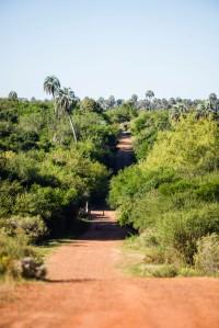 El Palmar roads