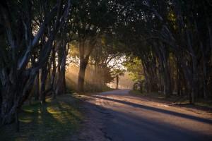 Sunset at Santa Teresa NP
