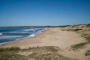 Wild beach at Santa Teresa